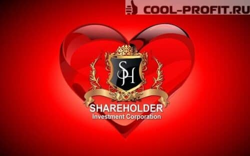 shareholder-company