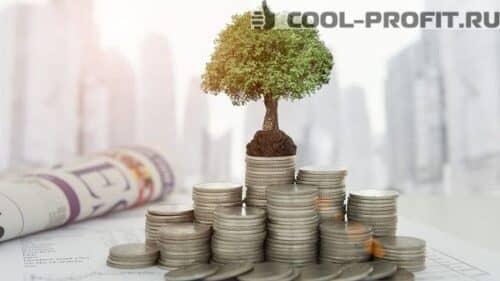 uchastniki-investitsionnogo-proekta