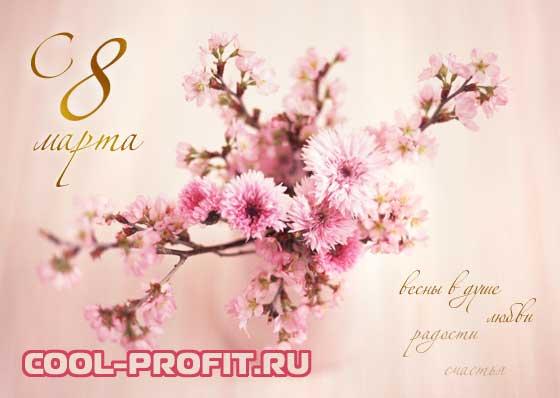 с праздником весны, с 8 марта cool-profit.ru