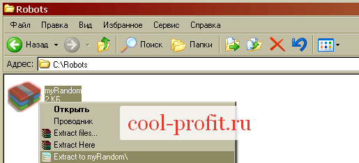 Извлечение архива с советником (для cool-profit.ru)