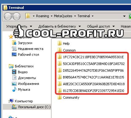 Названия папок с терминалами на VPS сервере (для cool-profit.ru)